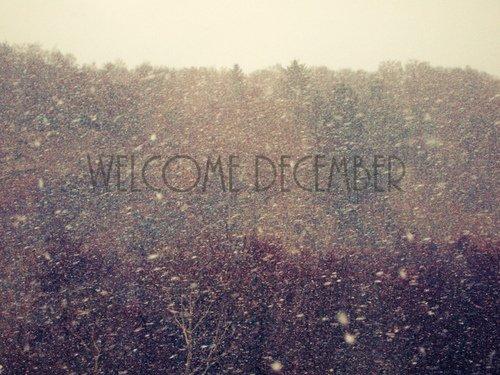 Noël arrive ... la neige aussi ...
