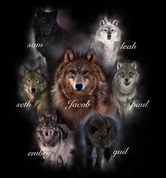 """Les Loups dans le film """" TWILIGHT """""""