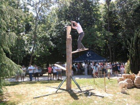 Concours de Souvans (39)
