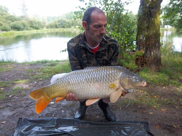 carpe de 11kg800 belle commune