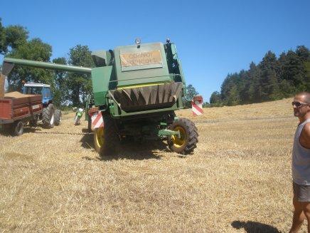 moissonneuse 2054 HILLMASTER et tracteur fort