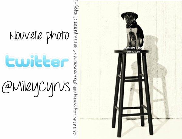 Nouvelle photo TWITTER du compte de Miley!