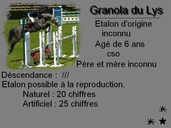 Granola du Lys