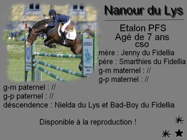 Nanour du Lys