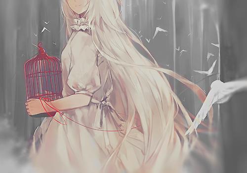 Perso de RP: Cynthia