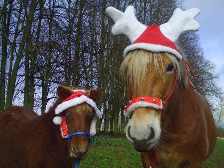 Nous vous souhaitons de joyeuses fêtes de fin d'année !