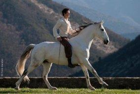 Un homme est mort, une légende est née... Mathieu Pignon , un homme de cheval que je n'oublierai jamais