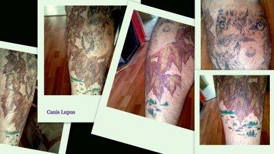 Passion Lupus