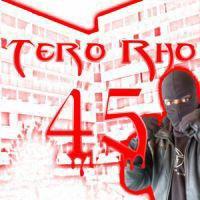 45 teroriste