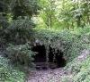 Description du Camp : Taniere des anciens