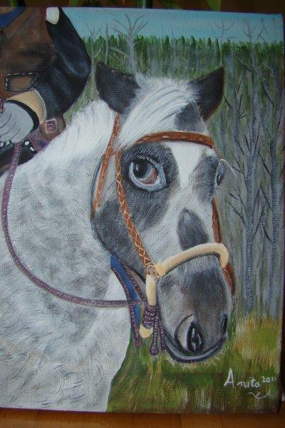 le cheval de ADAM
