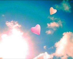 Chapitre 7 _________________________Summer Memorie