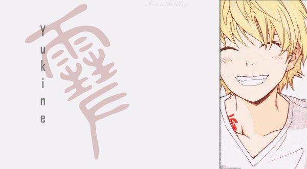 ♦ Habillage Yukine ♦