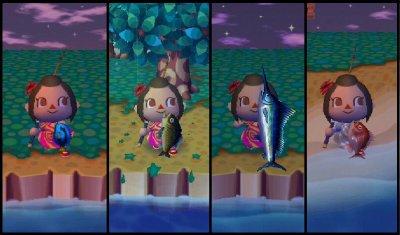 Les poissons & les insectes