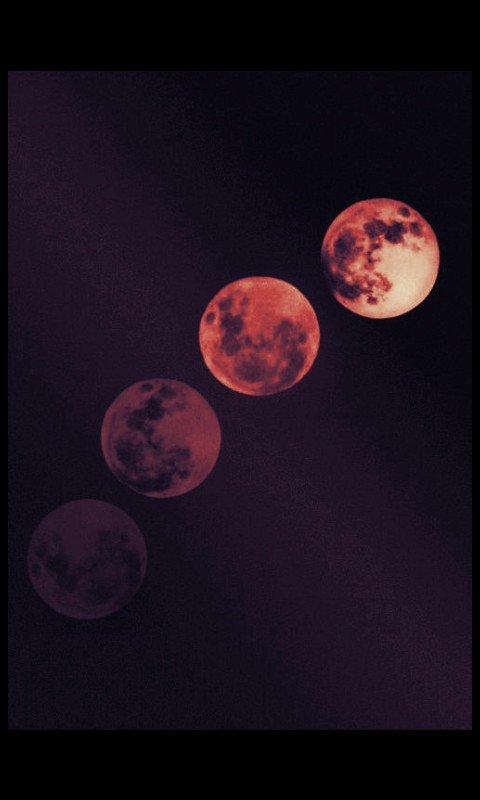 Moonshine.