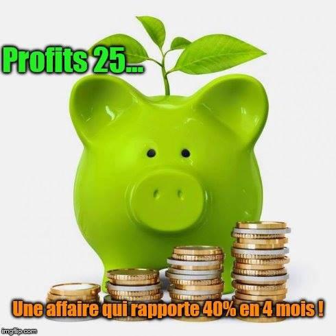 Présentation de Profits 25