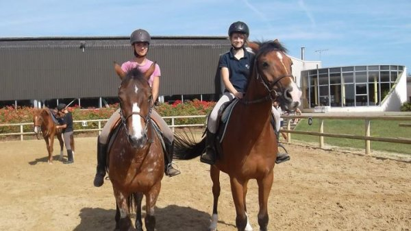 stage galop 1 a 4 :D