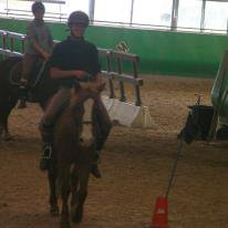 Le cheval plus qu'un simple passion une vie ♥♥