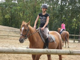 Le cheval plus qu'un simple passion une vie ♥♥