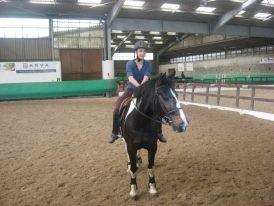le cheval idéal de ma vie gepy de cantagril <3 le meilleure cheval que j'ai monter gepy :)