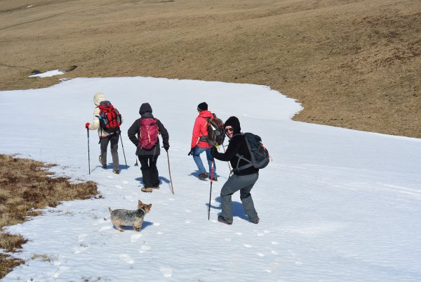 suite des photos de la sortie au Mont Chamaroux