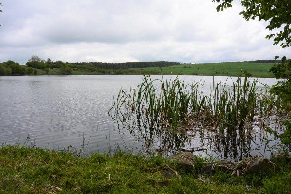 photos de la rando au Lac Sauvage (06.06.21)