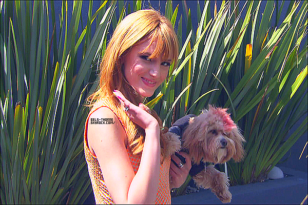 Bella & Kingston dans l'émission 'The Show With Vinny', diffusée sur MTV