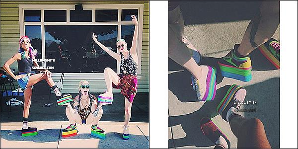 . 07/07 : Willow Smith à été photographiée avec des amies au « Flea Market » situé à Hollywood, en Californie.  Willow nous fais sa 1er sortie de l'été, j'aime beaucoup ces bottes mais j'adhère moins aux restes de la tenue pour moi bof.       .