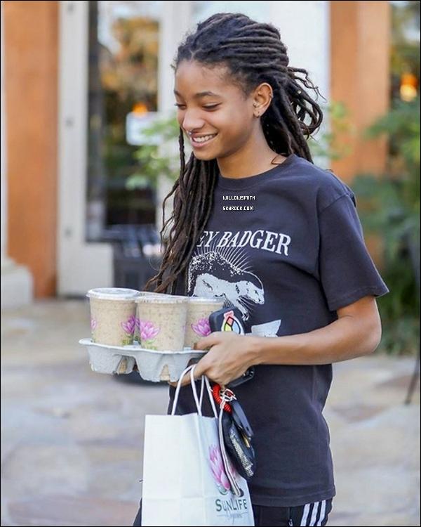 . 15/01 : Willow à été photographiée avec une amie traînant à Calabasas Commons, à Calabasas, en Californie, LA !  Willy avait un pantalon gris et un t-shirt de cerf jumelé avec des espadrilles Vans. Elle est assez discrète sur les réseaux pour le moment.  .
