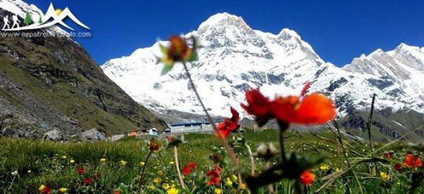 http://www.nepaltrekkingtrails.com/