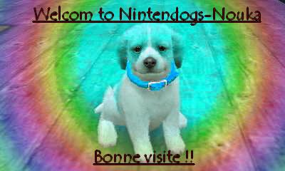 Bonjour & Bienvenue