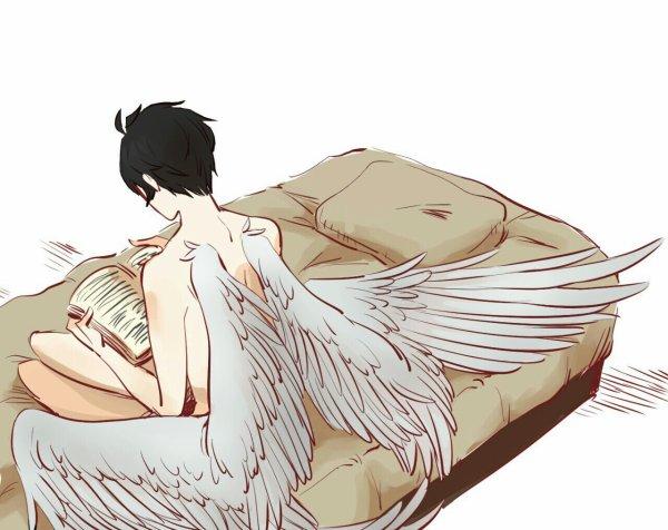 Daiki ~ Ange.