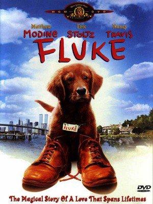 ♦ FLUKE