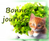 BONNE JOURNEE A TOUS
