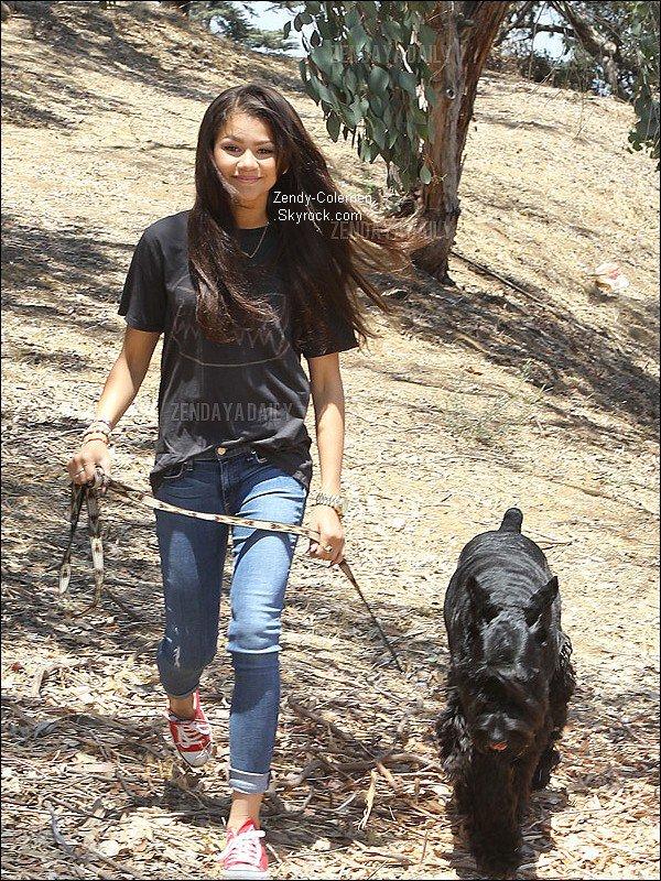 .11.07.2012 :Zendaya promenait son chien dans une colline. .