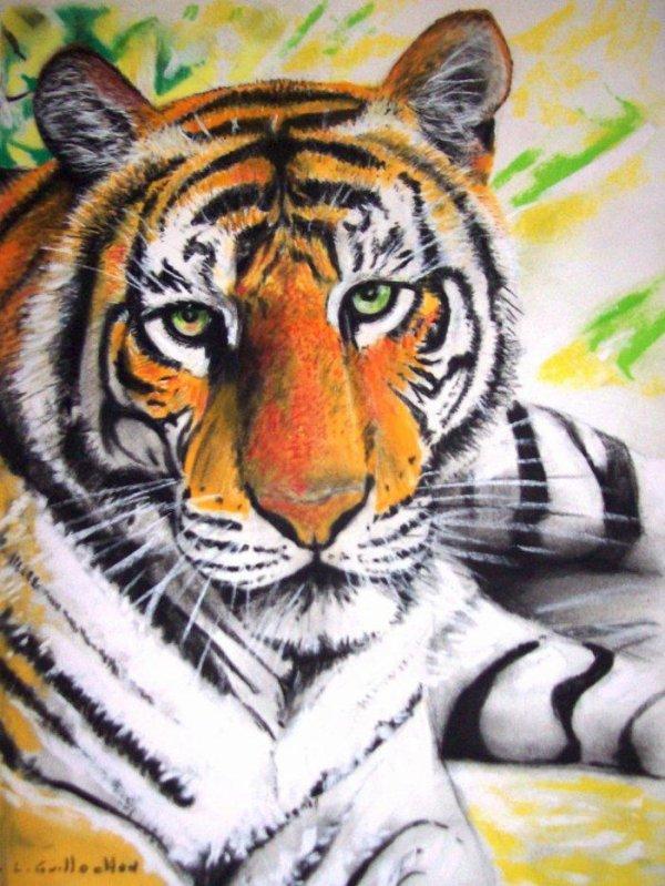 """un essai """" Le Tigre """""""