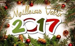 Meileurs voeux à tous pour 2017
