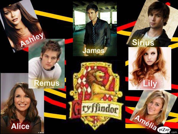 James et Lily Potter, une vie, un destin