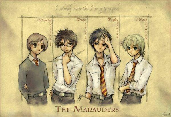 Les Maraudeurs