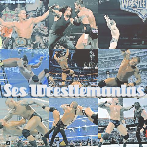 Ses wrestlemanias