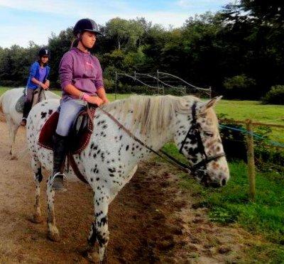 →  L'air du paradis est celui qui souffle entre le oreilles du cheval. ♥