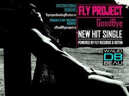 FLY PROJECT / Goodbye (Original 2011 Extended Mix Rework) (2011)