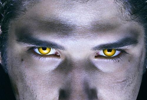 2 photos promo de la saison 3 de Teen Wolf