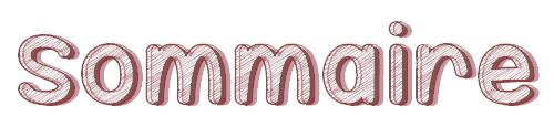 ツ Sommaire