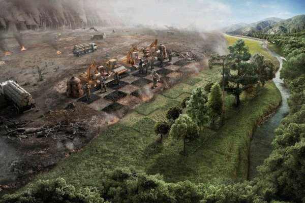« L'homme pille la nature, mais la nature finit toujours par se venger. » Gao Xingjian.