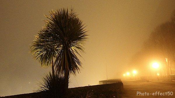 Brouillard du soir bonsoir....