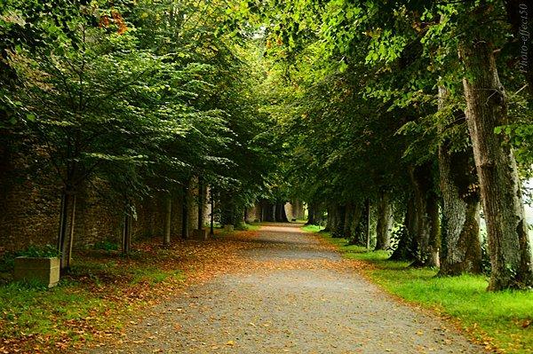 """""""L'automne raconte à la terre les feuilles qu'elle a prêtées à l'été.""""  Georg Christoph Lichtenberg"""
