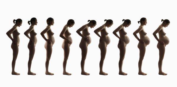 Connu Mois apres Mois tu grandi en moi - je vient d'aprendre ma grossesse WP05