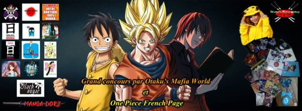 GRAND CONCOURS MANGA 50 LOTS A GAGNER !!!