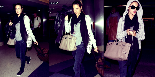 Alessandra à l'aéroport de LAX, le 17 Novembre.
